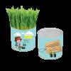 פחית זרעים 2017-06