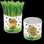 פחית זרעים-02